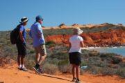 Francois-Peron-Wildlife-Tour-Full-Day