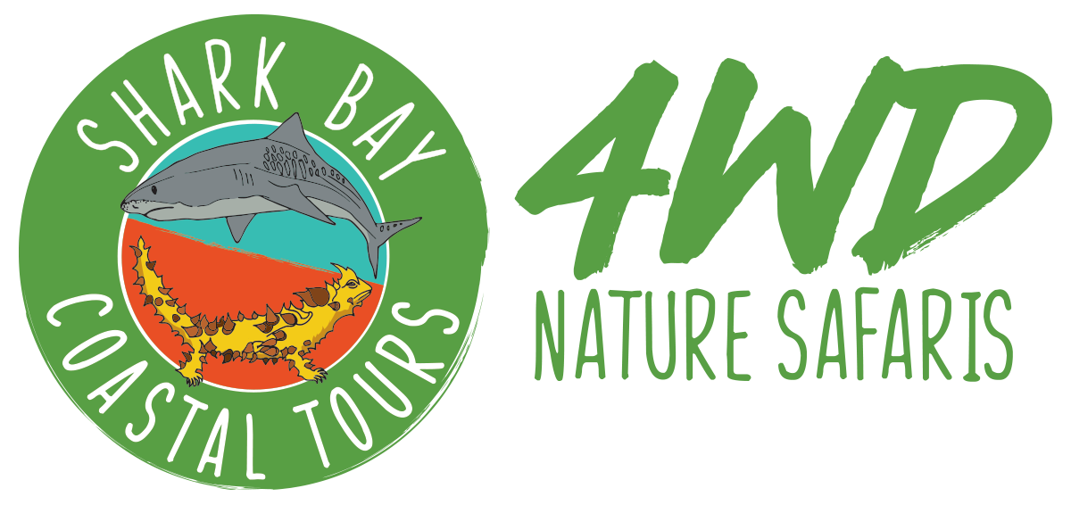 Shark Bay Coastal Tours - 4WD Nature Safaris